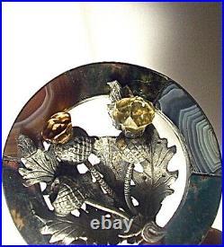 Large Antique Scottish Agate & Cairngorm Thistle Garter Brooch Pin