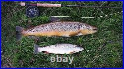 Scottish 1980s Ola Gorie 925 Sterling Silver Trout Salmon Cufflinks